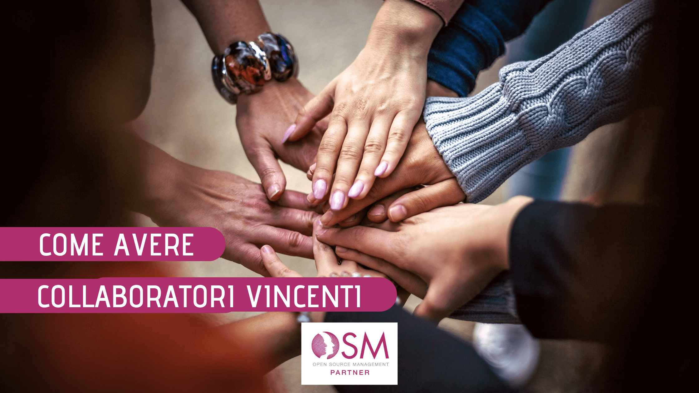 collaboratori vincenti